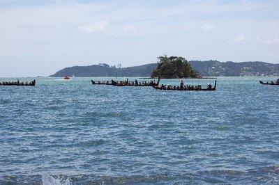 Maori Waka Taua [War Canoes]