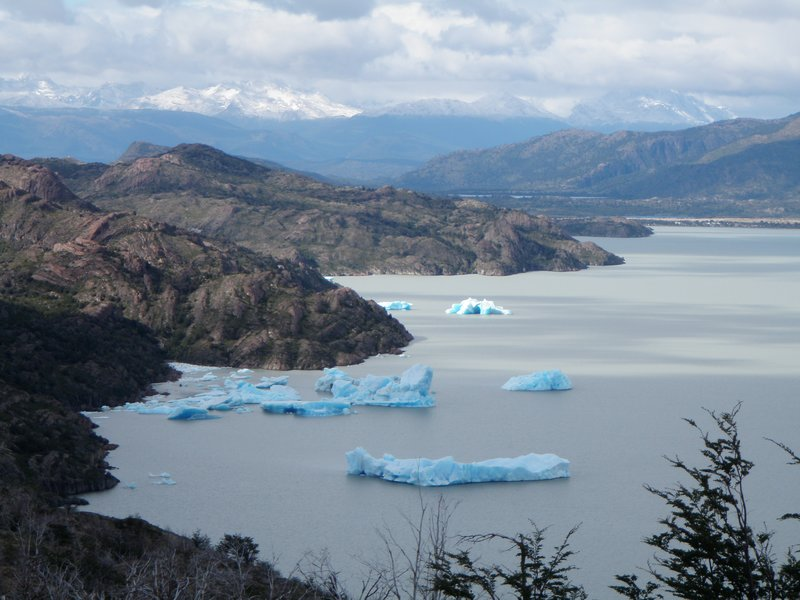 Blue icebergs on lake