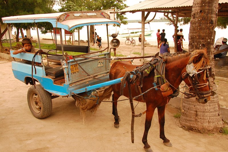 Horse Carriage on Gilli Island