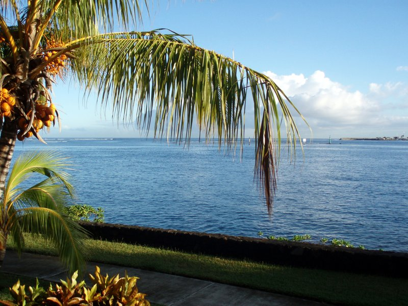 view from my room on Tahiti