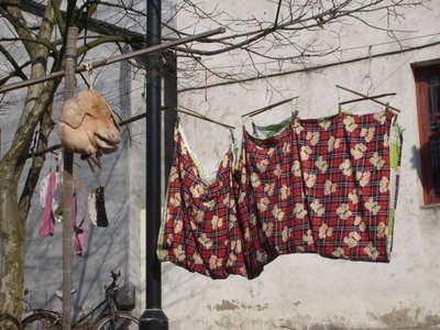 Pigs head is hung to dry :(