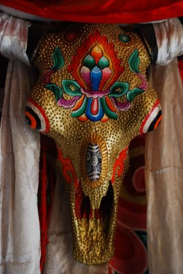painted skull in Daocheng
