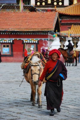 woman with horse in tagong