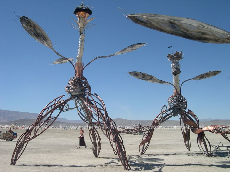 Burning Man 2008 - Playa Art