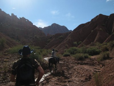 Horses and canyons
