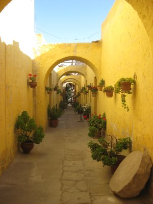 Beautiful alley in Convent ?? (i can't remeber the name!!)