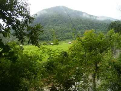 1089 Laos Lam Nam Tha - Nalan trek