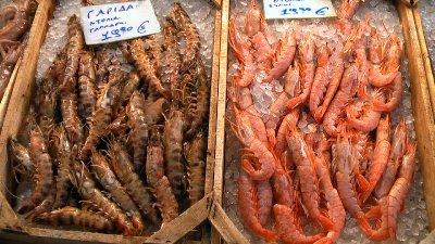 Piraeus Seafood 2