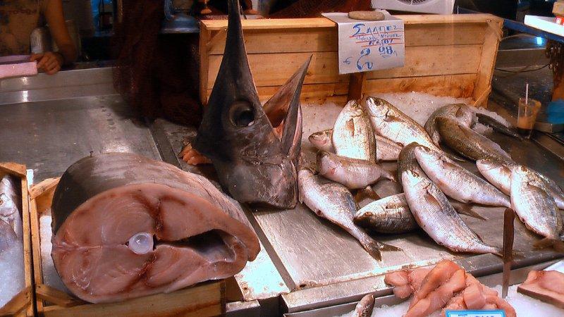 Piraeus Seafood 4