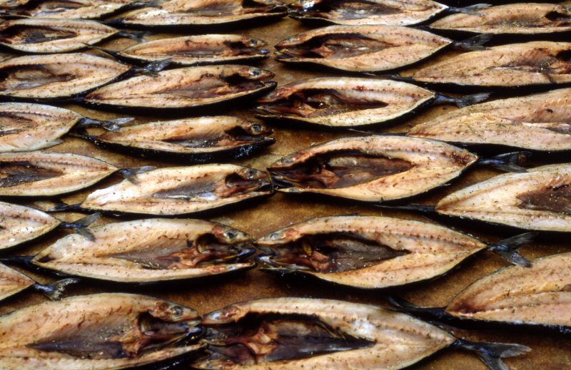 Drying Fish Samos