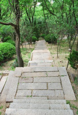 Path2.jpg