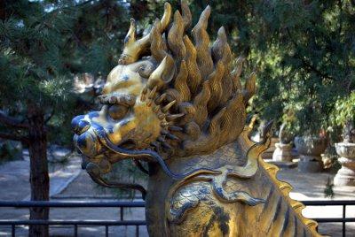 lionfire.jpg