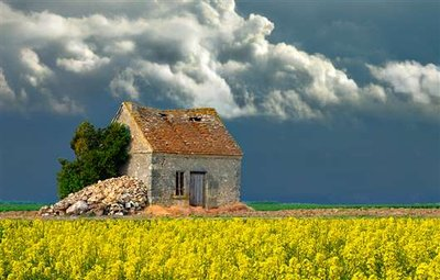 French_Countryside_1.jpg