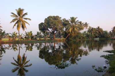 Backwaters_reflection.jpg