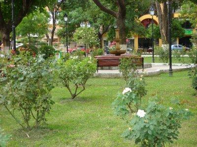Tarea park (2)