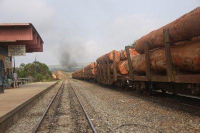 Gabon lumber