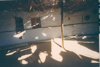 shadows africa