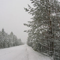 Winter road to Lake Baikal