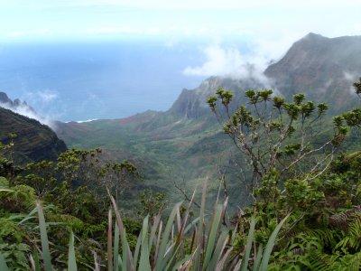 Hawaii_071.jpg