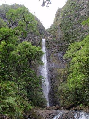 Hawaii_100.jpg