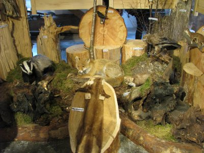 Lumber museum