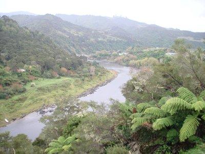 Whaganui_River_1.jpg