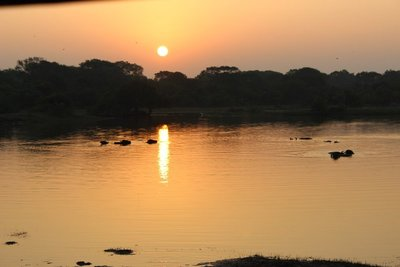 Dawn at Yala National Park
