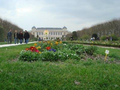 Jardin_des.._Blumen.jpg