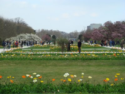 Jardin_des..s_B_ume.jpg