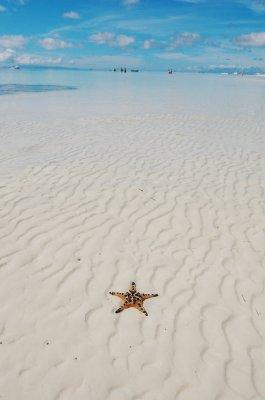 Star not in the sky  :)