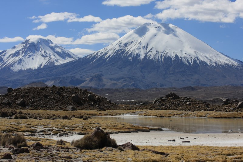 Vulkane Parinacota und Sajama (P. N. Lauca)