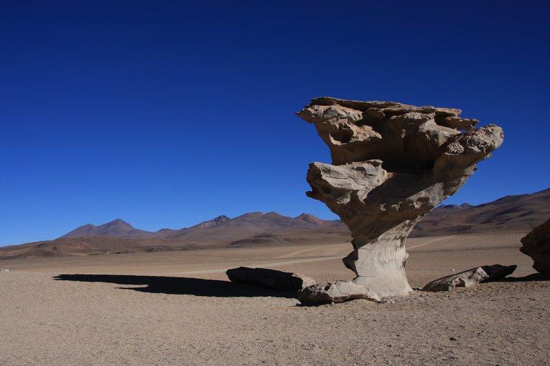 Arbol de Piedra (Steinbaum)