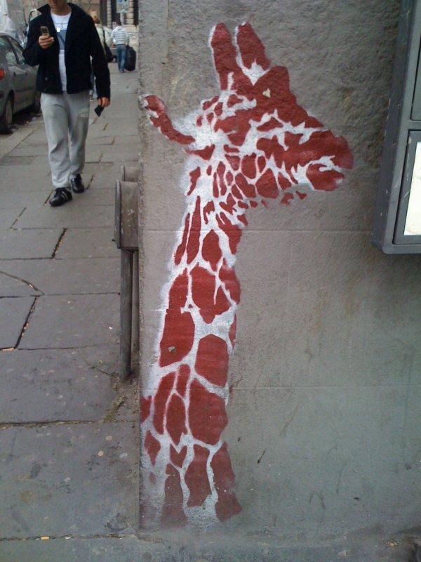 giraffe grafitti