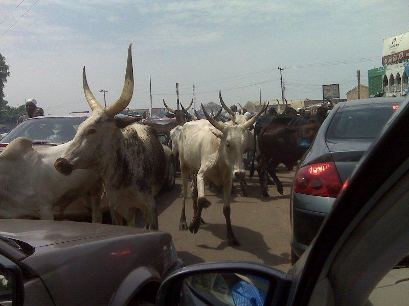 Kano traffic