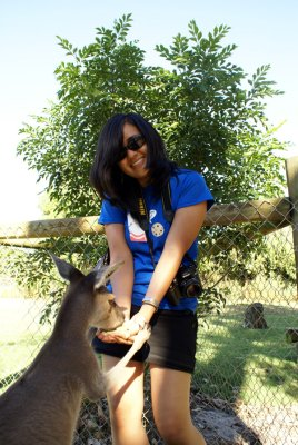 Perth [day four] kangaroo feeding