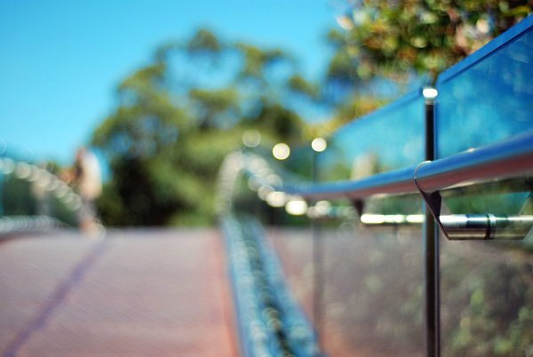 Perth [day seven] Kings Park, elevated walkway