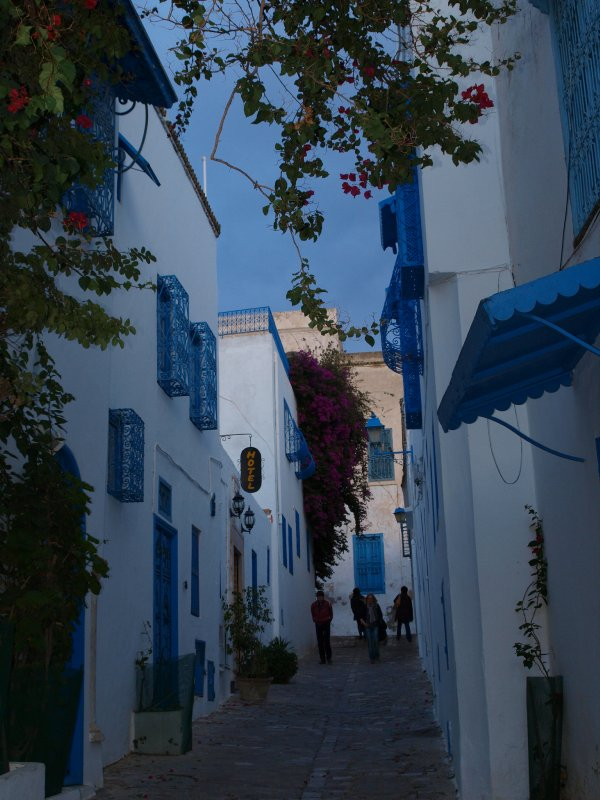 Alley in Sidi Bou Said
