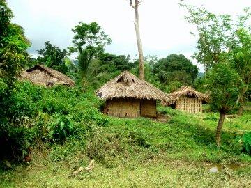 Pusog_homes.jpg