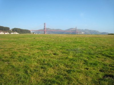 Golden Gate Bridge, in a field?
