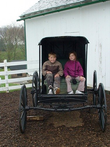 In an Amish Buggy.