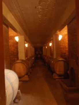 wine cellar nr mendosa