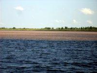 Meeting of the waters - Santarem
