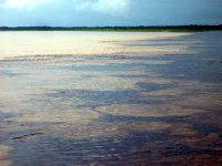 Meeting of waters Rio Negro and Amazon (lighter color)