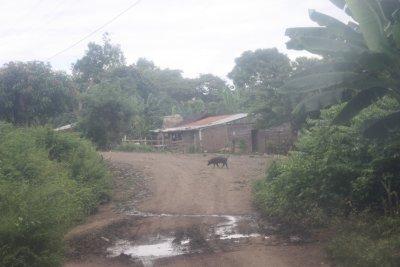 Nicaragua_2009_120.jpg
