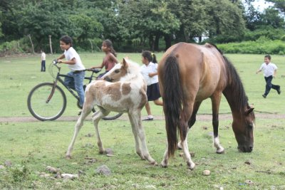 Nicaragua_2009_143.jpg