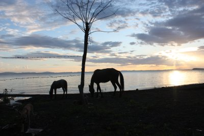 Nicaragua_2009_171.jpg