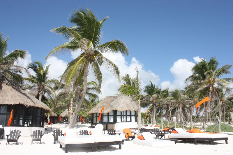 Mexico - Palenque 2009 203