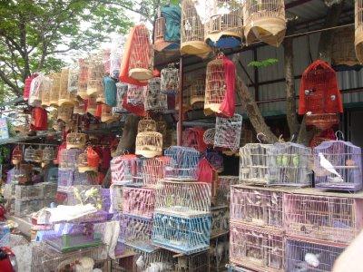 3074_Birds_in_Cages.jpg