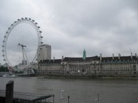 Thames Eye and Aquarium