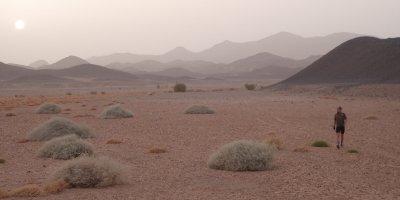 Nubain desert - rob hunting for campspot